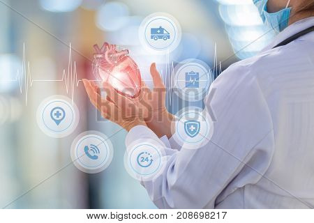 Doctor Cardiologist Shows A Heart.