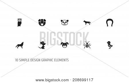 Set Of 10 Editable Zoology Icons. Includes Symbols Such As Dog, Puppy, Bird And More