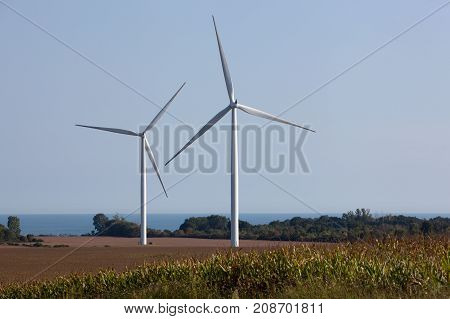 Wind Turbines on a Wind Farm for irrigation and alternative power generation.