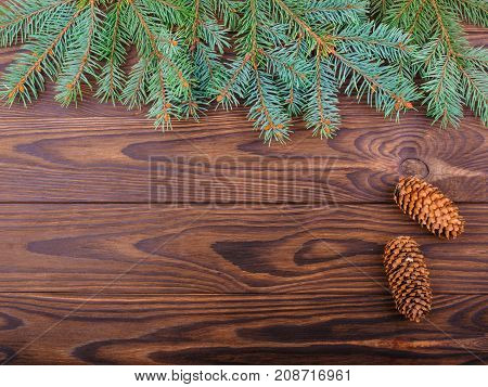 Winter concept of a green spruce branch on a brown wooden background with cones