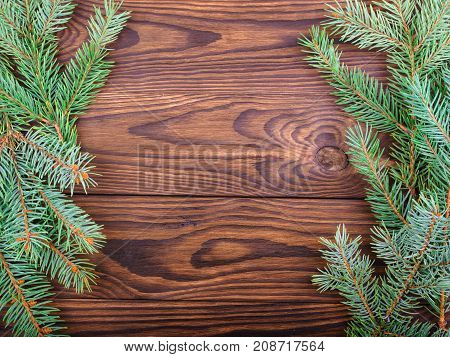 Winter concept of a green spruce branch on a brown wooden background on the sides