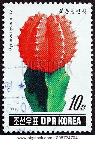 NORTH KOREA - CIRCA 1990: a stamp printed in North Korea shows Gymnocalycium sp. Cactus circa 1990