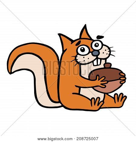 Cute squirrel found a big nut and smiles happily. Vector illustration. Funny cartoon cheerful character.
