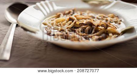 Homemade Austrian Pancake Soup Frädle in broth
