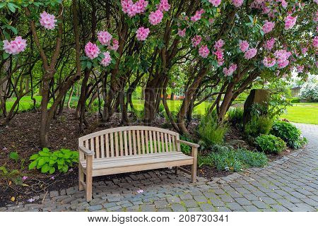 Garden Wood Bench under the flowering Rhododendron shrubs in the park in Spring Season