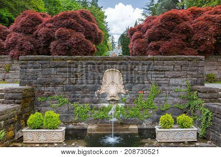 Dolphin head on rock stone wall water fountain with large red maple trees and plants in Renaissance Garden