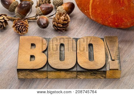 boo word abstract in vintage letterpress wood type with a pumpkin, Halloween greeting card