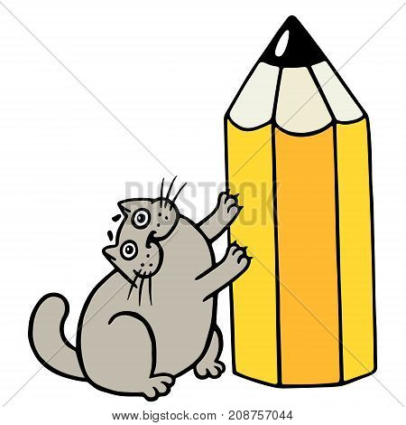 Cheerful fat cat loves pencils. Cartoon cool character. Isolated vector illustration.
