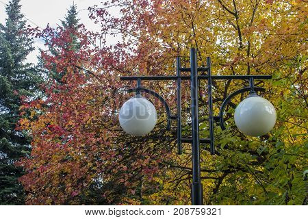 Lantern in a public park in autumn nature