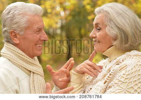 happy senior couple relaxing in autumnal park
