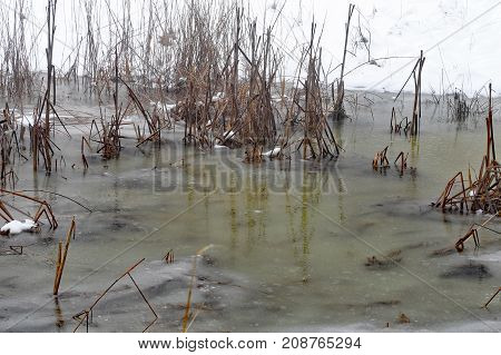 Icy Mountain Pond In Winter Amidst The Field