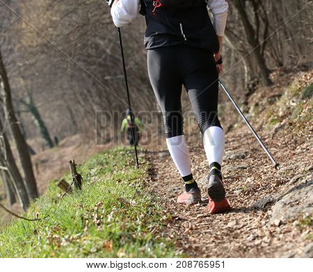 young woman with nordic walking sticks during workout on mountain path