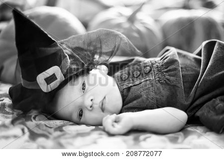 Cute newborn girl wearing witch hat. Halloween decorations black and white greeting card. Pumpkins on the background.