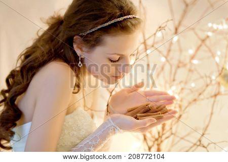 Princess holding cinamonn in christmas lighting. Close-up.