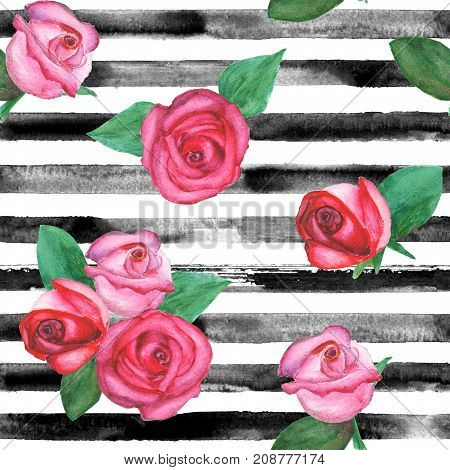 Watercolor hand drawn seamless pattern with black stripes and red and pink roses with green leaves. Fashion bed linen and fabric concepts.