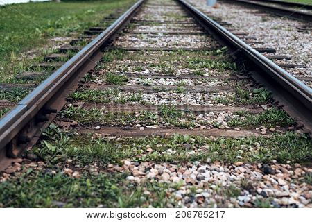 Old tram rails, close-up, summer autumn, between sleepers grass, gravel stones the city.