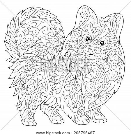 Coloring page of pomeranian dog symbol of 2018 Chinese New Year. Freehand sketch drawing for adult antistress colouring book with doodle and zentangle elements.