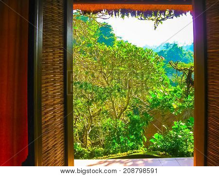 The view from open window at resort at Ubud