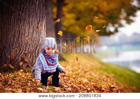Adorable Happy Baby Girl Sitting In Fallen Leaves In Autumn Park