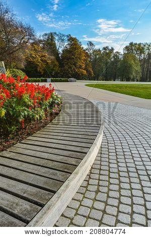 Wooden bench and paved pathway on autumn season in the park