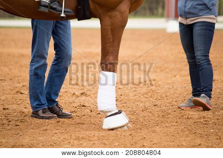 Close Up Of Horse Legs In The Arena And Coach Standing Near