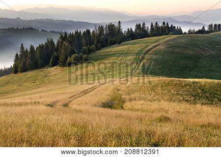 Long shadows from the growing trees lie on the road at the top of the mountain in the rays of the rising sun against the backdrop of the mountain summer landscape of the Carpathians.
