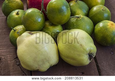 quince fruit, natural organic quince pictures, hold the hand with a quince fruit,