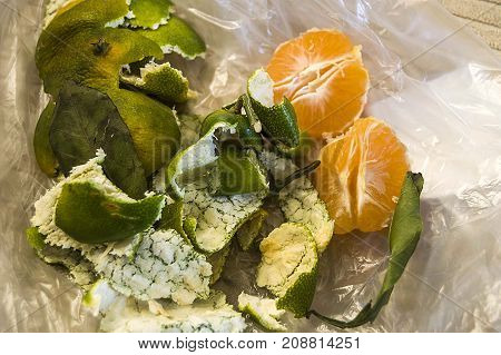 mandarin and shells, peel mandarin from the shell