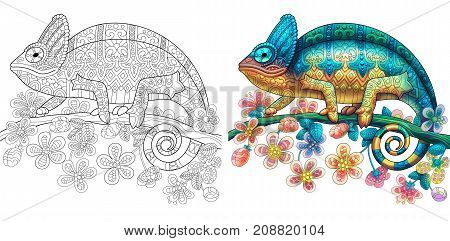 Collection of two chameleon lizards - monochrome and colored versions. Freehand sketch drawing for adult antistress coloring book with doodle and zentangle elements.