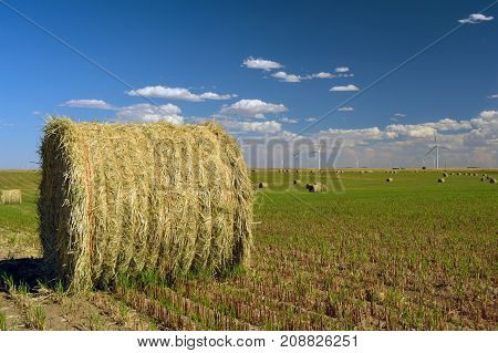 Hay Bale in a Field with Wind Turbines in the Distance