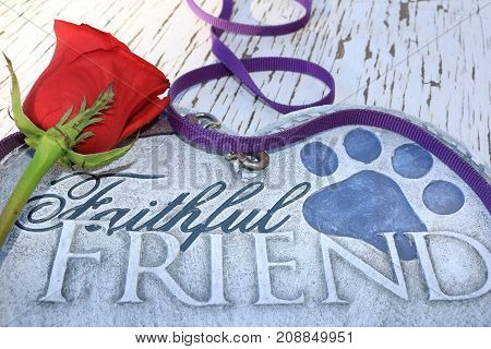 Dog leash surrounding a heart shaped plaque