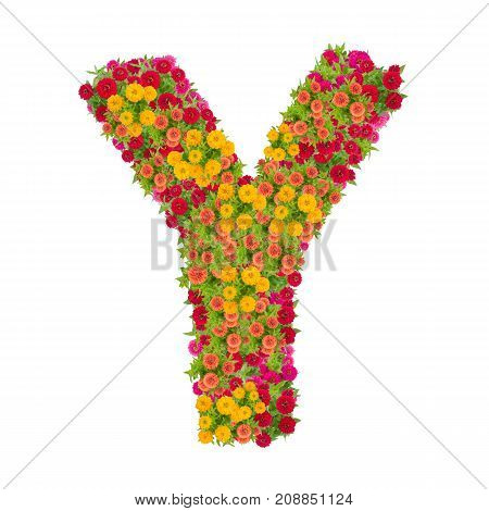 Letter M alphabet made from zinnia flower ABC concept type as logo. Typography design