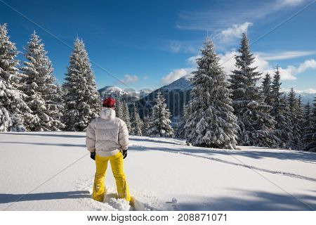 Traveler, Woman  Stands In A Deep Snow