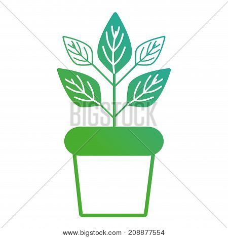 line natural plant with leaves inside flowerpot vector illustration