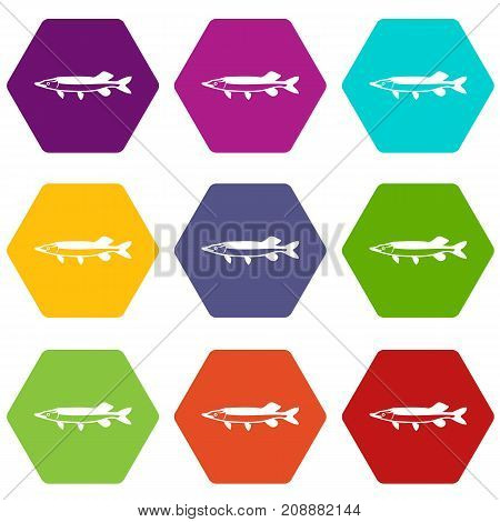 Saury icon set many color hexahedron isolated on white vector illustration