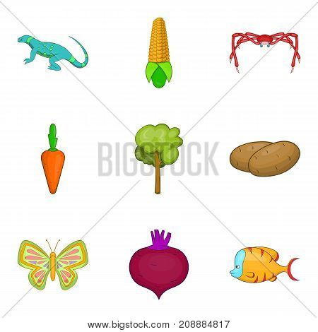 Root crop icons set. Cartoon set of 9 root crop vector icons for web isolated on white background