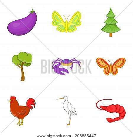 Observation of animal icons set. Cartoon set of 9 observation of animal vector icons for web isolated on white background