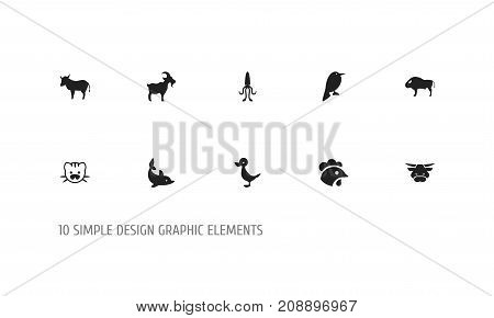 Set Of 10 Editable Zoology Icons. Includes Symbols Such As Rooster, Beast, Quack And More