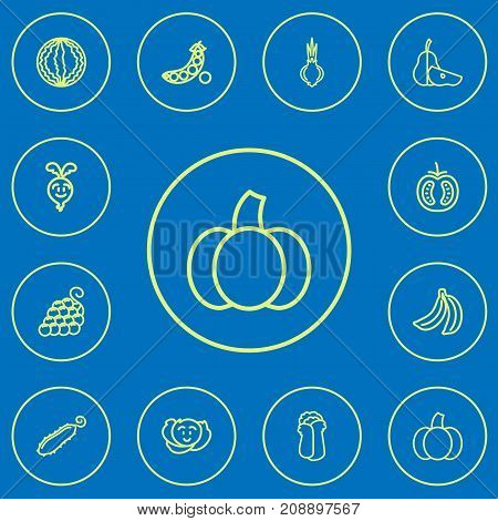 Set Of 12 Editable Cooking Outline Icons. Includes Symbols Such As Banana, Cole, Turnip And More