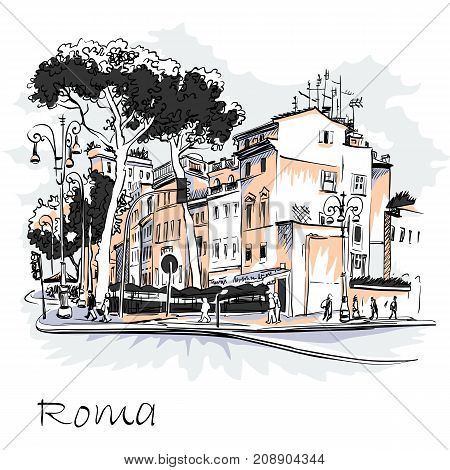 Vector scenic city view of Typical Roman street with Stone pine trees in the old city in Rome, Italy