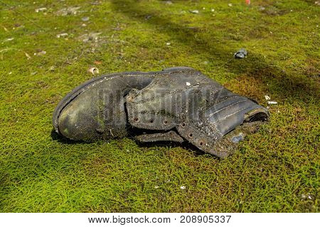 Rotten old moss and mold covered boots. Very old boots on green moss. Old shoe in moss. Old shoe lost in the nature.