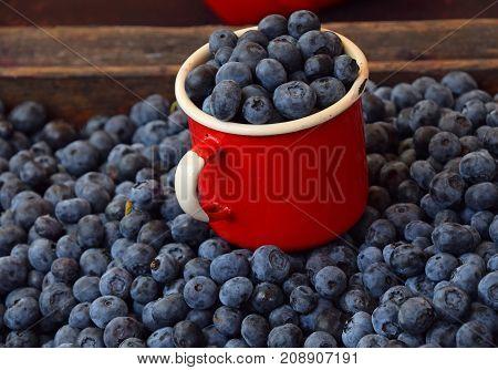 Fresh Ripe Blueberry Berries In Old Metal Mug