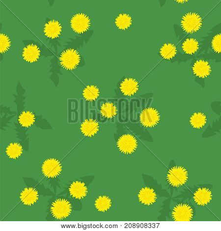 Summer field of yellow dandelions seamless pattern