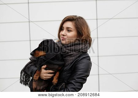 Outdoor lifestyle shot of happy young woman in stylish clothes carrying lovely dachshund dog while having walk or going shopping posing isolated at blank wall with copy space for your information