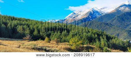 Pirin mountains snow peaks and pine trees panorama of bulgarian ski resort Bansko, Bulgaria