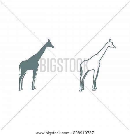 Giraffe Grey Set Icon .