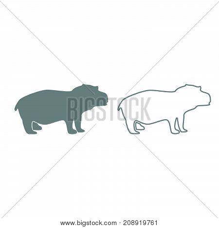 Hippopotamus Grey Set Icon .