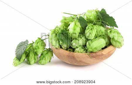 hop cones with leaf in a wooden bowl isolated on white background close-up.