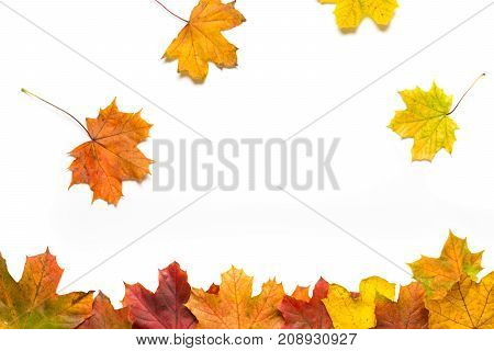 Line Of Autumn Leaves With Falling Leaves On A White Background