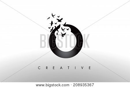 O Logo Letter With Flock Of Birds Flying And Disintegrating From The Letter.